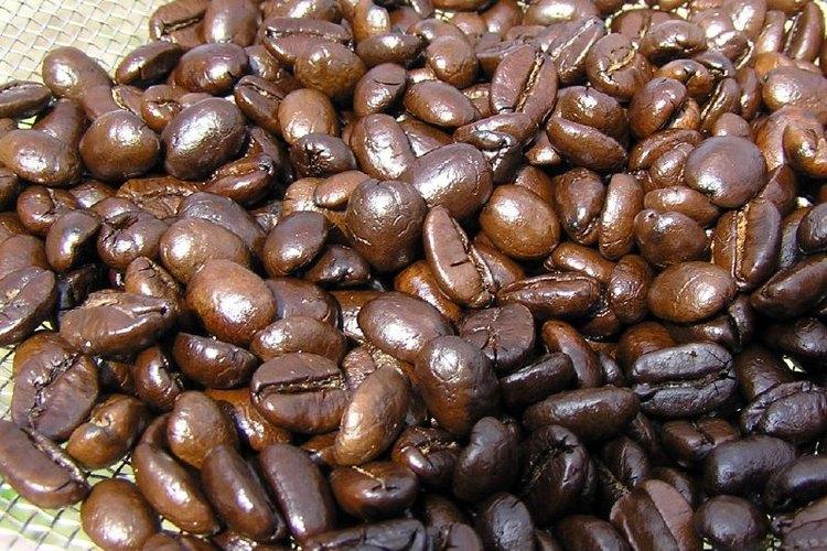 Usa café molido en granos medianos para una cafetera automática.