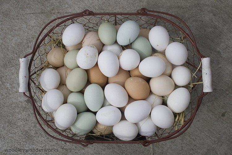 Huevos duros.