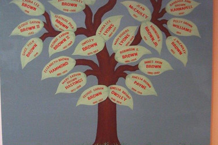 Los términos de relación ayudan en la investigación genealógica.