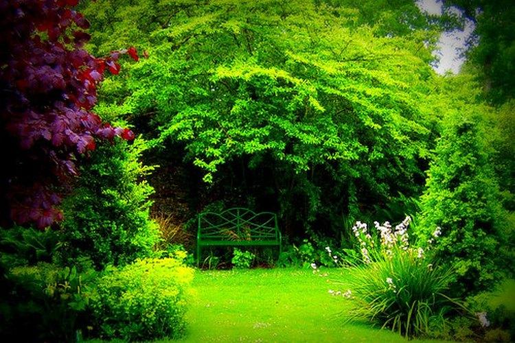 Un banco de jardín de hierro que recuerda el estilo victoriano.