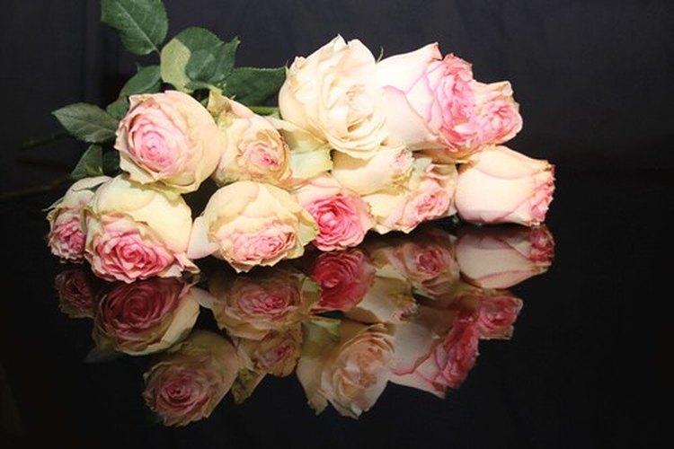 Aunque sea un gesto amable, las flores suelen ser innecesarias para un funeral judío.