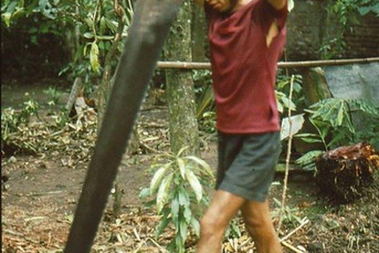 Una sierra es utilizada para cortar madera.