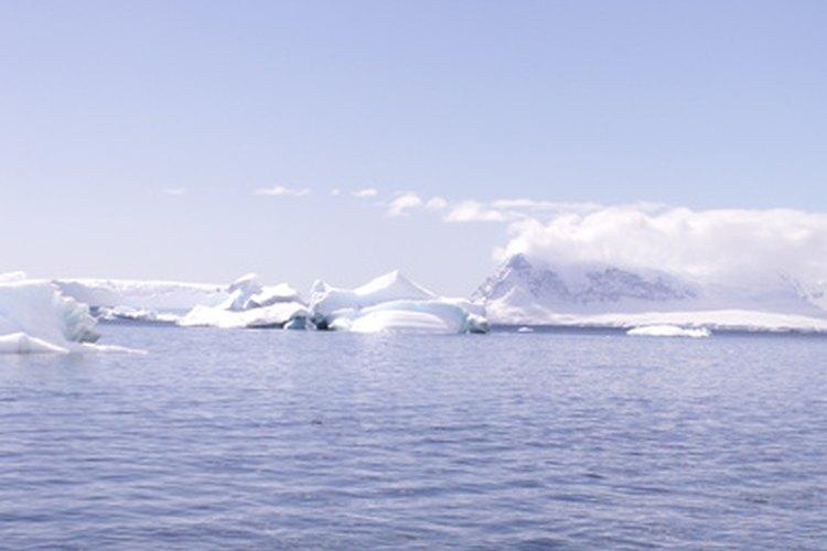 Los lobos marinos viven cerca de las costas de muchas islas sub-antárticas.