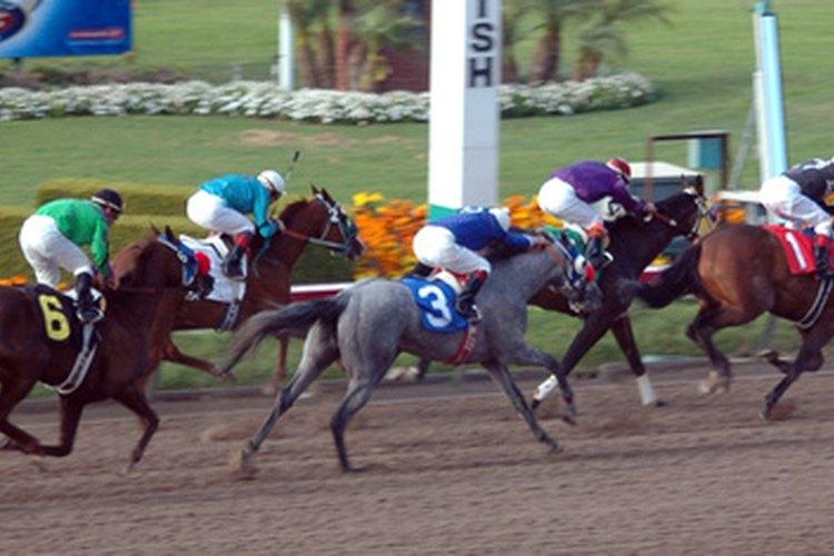 Un caballo bueno y bien entrenado equivale a un gran final.
