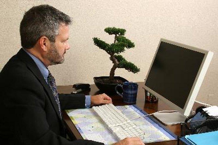 Muchos programas de licenciatura en matemáticas también requerirán algo de trabajo sobre cursos básicos de informática.
