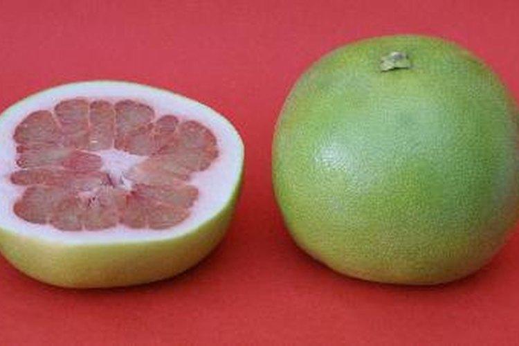 Extracto de semilla de pomelo.