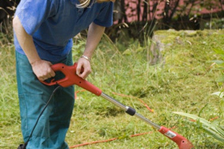 Pregunta a los locales si tienen trabajos en el jardín que puedas hacer.