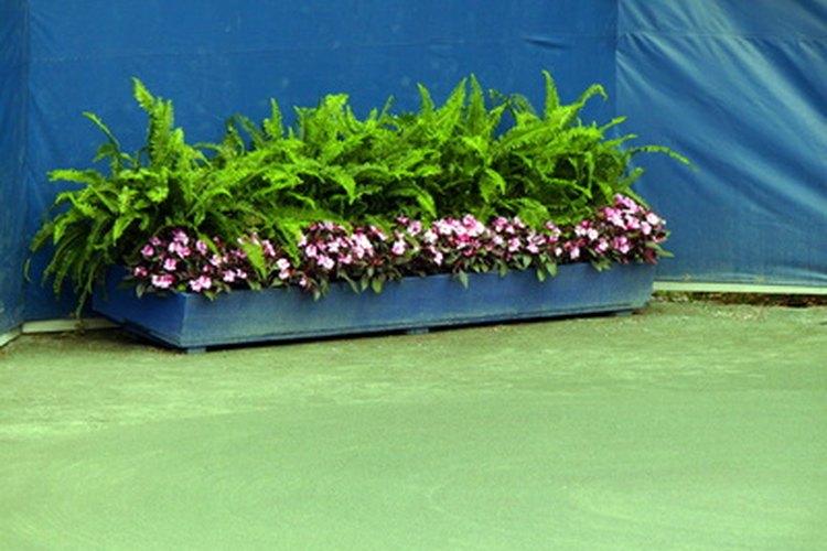 C mo hacer jardineras de cemento para exteriores for Que plantas poner en una jardinera
