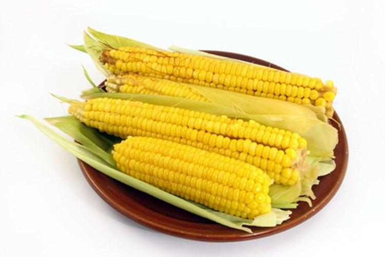 La mayoría de las personas adora el gusto del maíz fresco sobre la mazorca en el verano.
