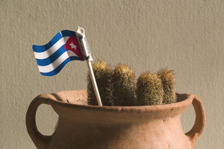 Algunos decorados sencillos ayudarán a crear un buen clima en tu fiesta de temática cubana.