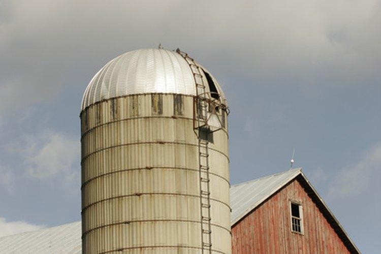 Los granos se almacenan en los silos.