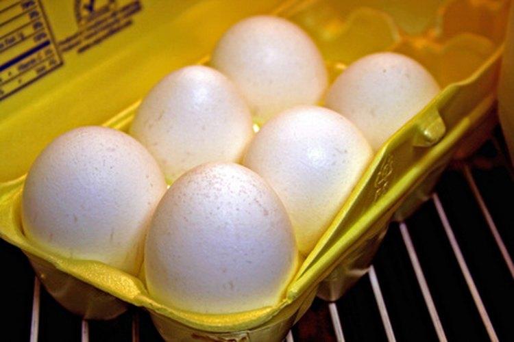 Los huevos y otros alimentos se echan a perder rápidamente si tu refrigerador está estropeado.