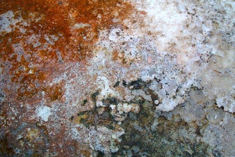 El sarro se forma por depósitos minerales.