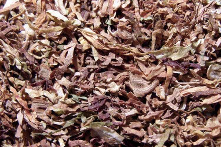 Cultiva tabaco orgánico.