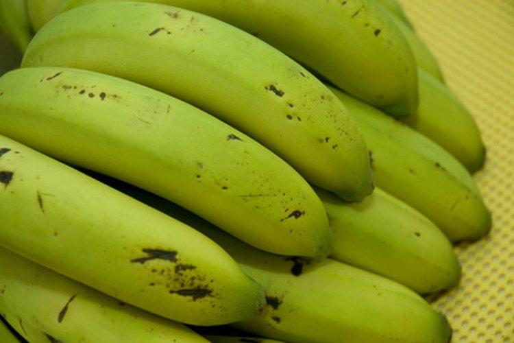 Los plátanos verdes en ocasiones necesitan ayuda para madurar más rápidamente.