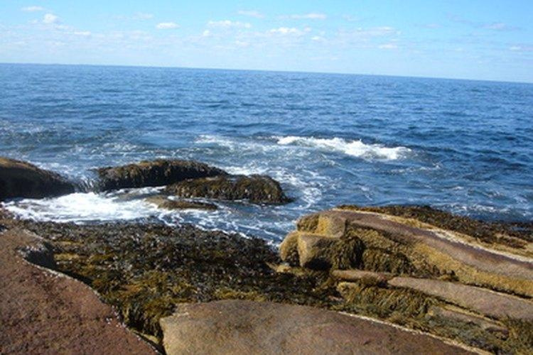 Océano Atlántico, lugar donde supuestamente se hundió la Atlántida.