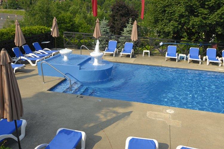 Las plantas de piscina añaden color y proporcionan privacidad.