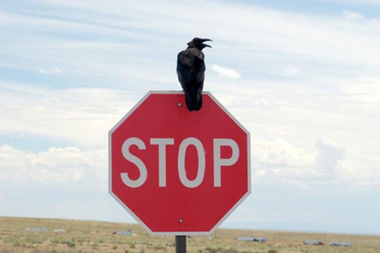Los conductores deben detenerse antes de cruzar si hay una señal de Pare.