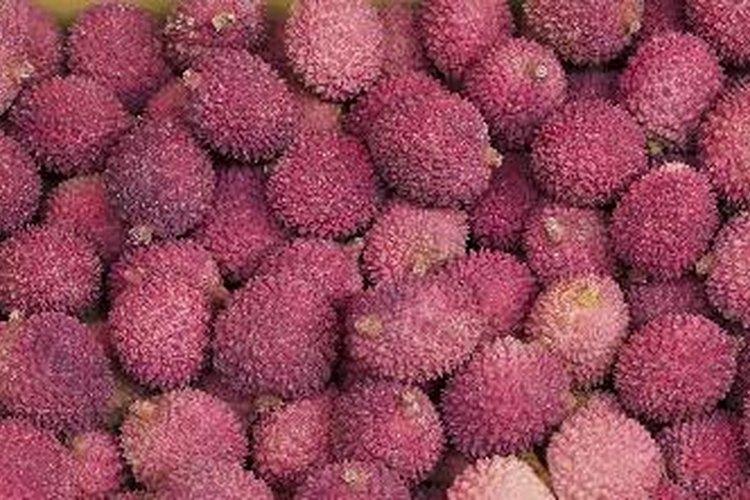 Un lichi es un fruto pequeño y suculento de origen asiático.