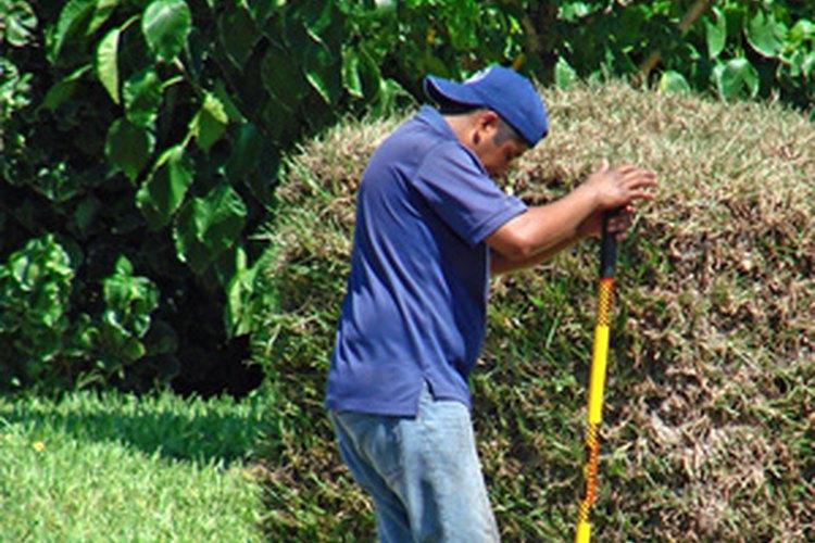 Las herramientas para excavar los hoyos ayudan a hacer agujeros profundos y estrechos para la colocación del poste.