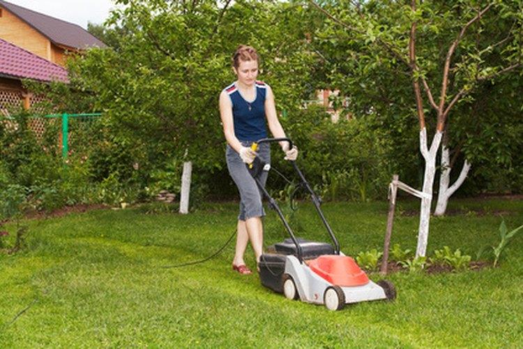 El cuidado de las plantas y del césped son tareas comunes.
