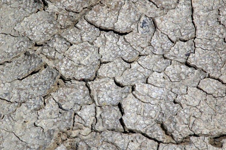 La tierra agrietada es un signo distintivo de sequedad y falta de agua.