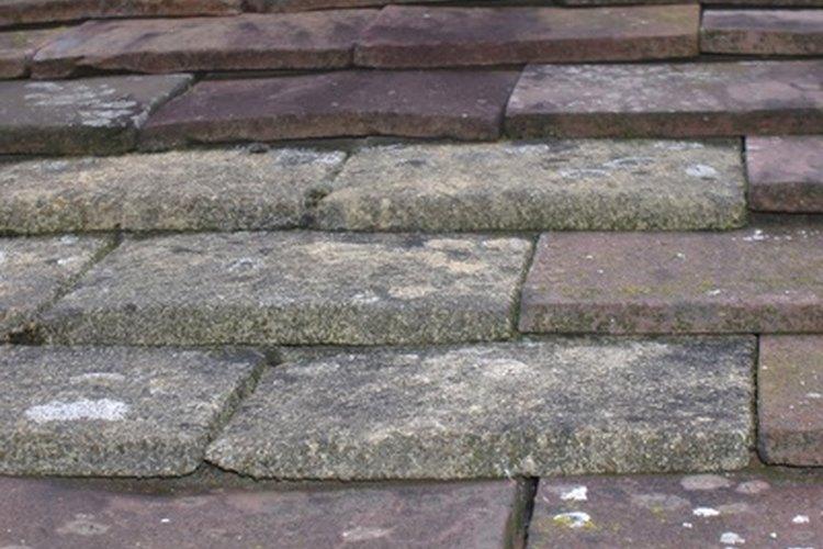 Los azulejos se pueden colocar sobre hormigón.