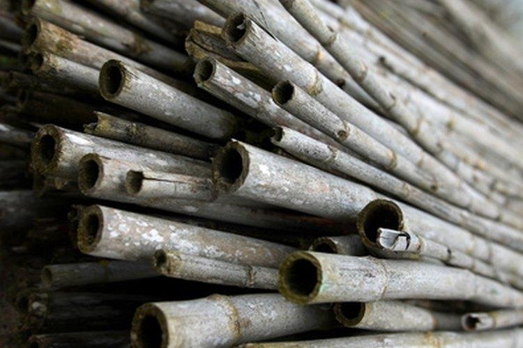 El bambú es una hierba, no una madera. Crece muy rápido, haciendo de este un recurso renovable.