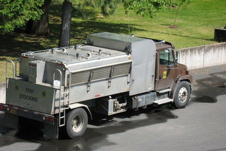 Manejar autobuses escolares, camiones de basura y otros camiones, requiere una licencia de conductor comercial.