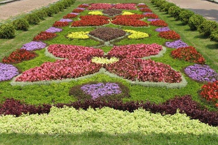 Un jardín impecable se refleja en los estudiantes de la escuela.
