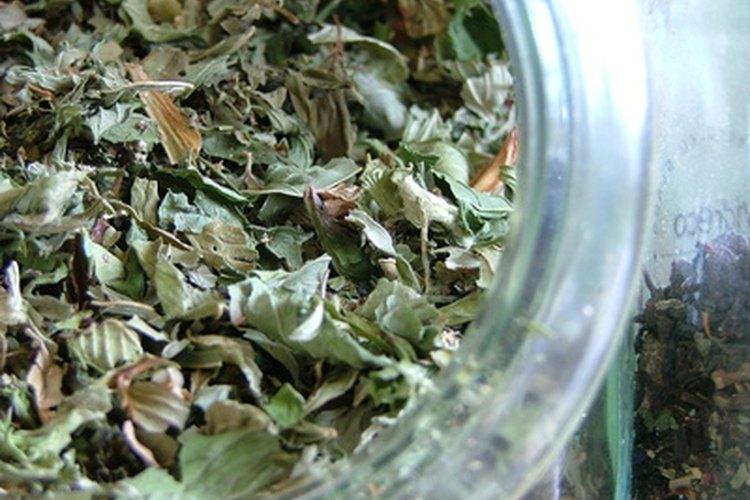 El té verde puede aliviar el cuero cabelludo quemado por el sol.