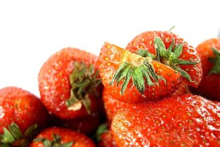 Conoce los distintos tipos de plantas de frutillas.