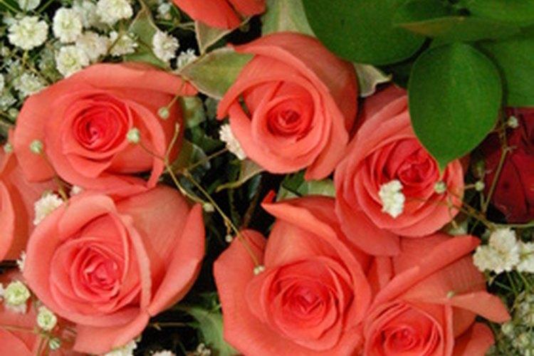 Crea ramos fabulosos como los de los floristas profesionales.
