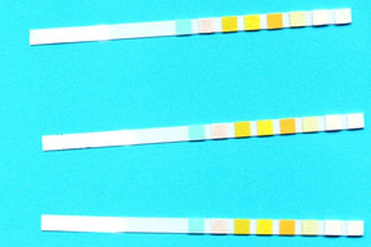 Usa un cinta de prueba de pH para conocer el pH de la piscina.