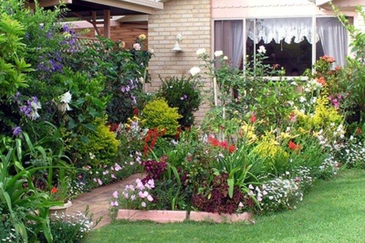 Planes para un jard n peque o en el patio trasero for Jardines bellos fotos