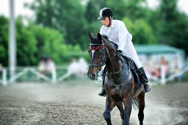 Construye una pista para equitación