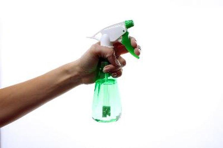 Rocía la solución de agua con oxígeno blanqueador sobre los hongos y el moho.