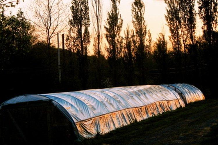 Una fila cubierta es un invernadero corto.