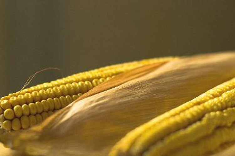 Fertilizante para el maíz.