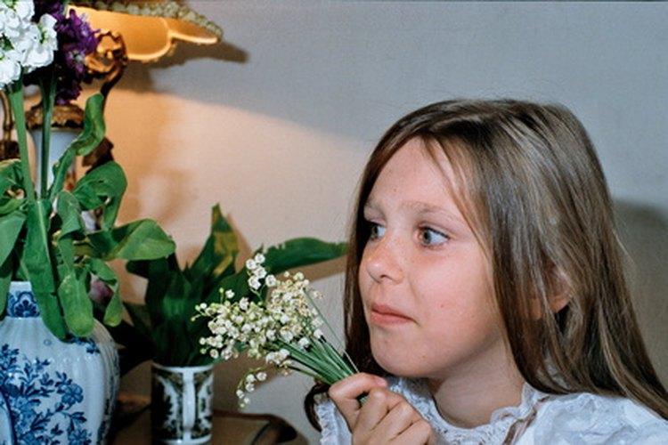 La violencia en la televisión puede afectar negativamente a los niños.
