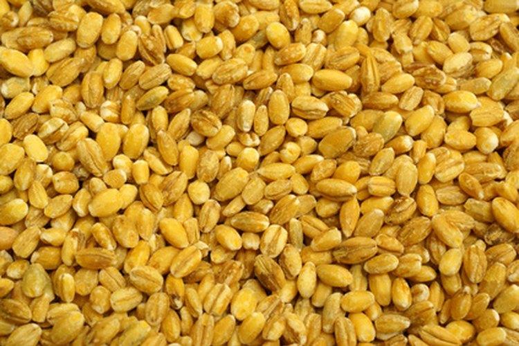 La cebada sin descascarar es un tipo de grano entero.
