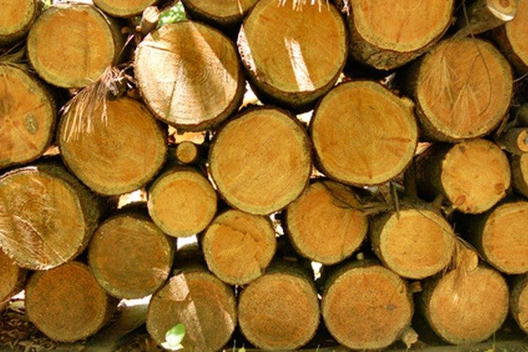 El ipé es una madera dura brasileña densa que se usa para estructuras y muebles de exterior.