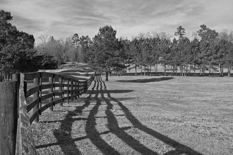 Cada rancho necesita una cerca.