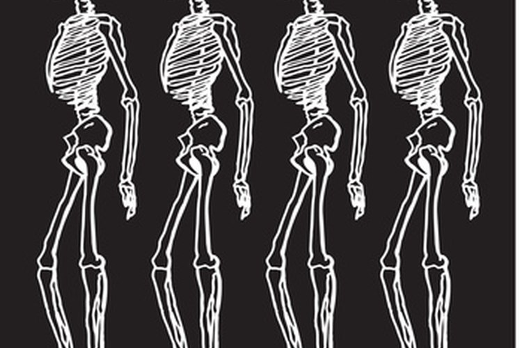 El alineamiento espinal del humano es óptimo para el movimiento bípedo.