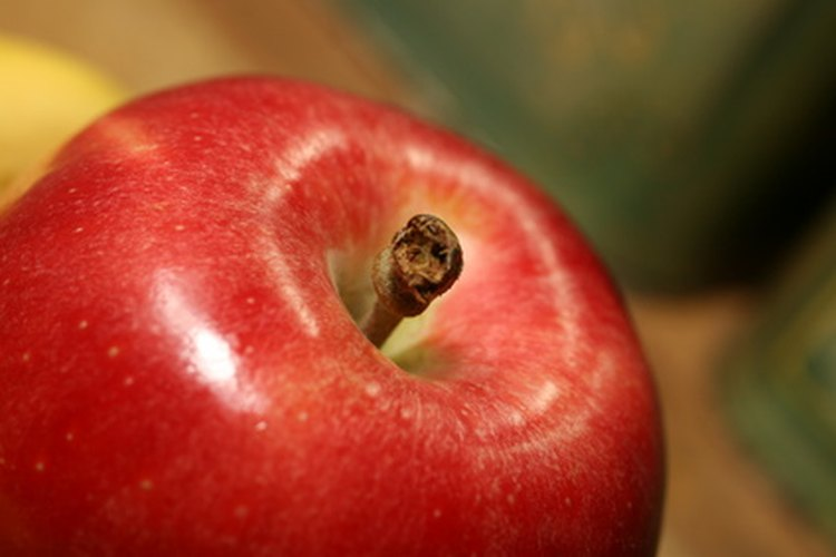 Cu nto demora un rbol de manzanas en dar los frutos for Cuanto miden los arboles