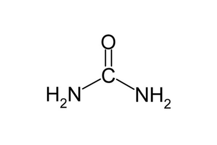 La urea es una fuente concentrada del nitrógeno disponible.
