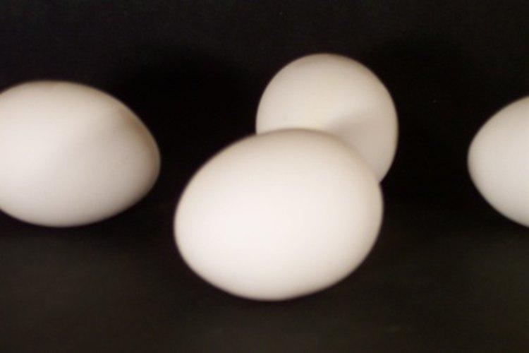 ¿Qué tan nutritivos son los huevos y sus claras?