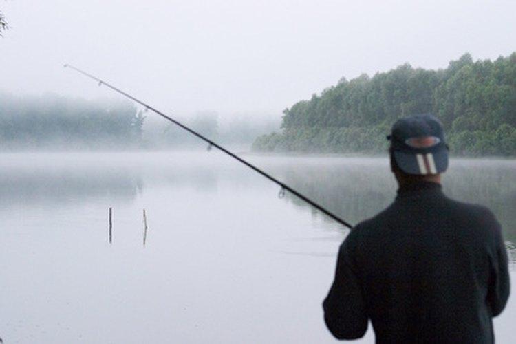 El salmón puede ser capturado desde la costa.
