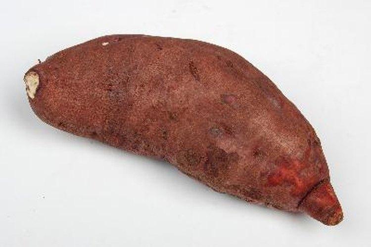 Es muy sencillo cultivar una patata como planta de interior.