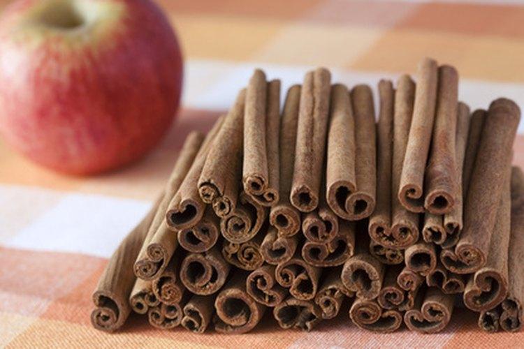 C mo hacer un aromatizante de ambiente de manzana y canela - Hacer ambientador casero canela ...